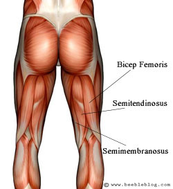 trekkende spieren in benen